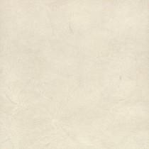 F649_ST16白珪藻土