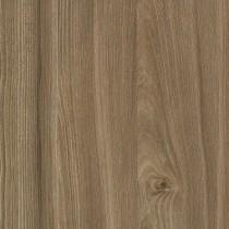 H1212_ST33棕色托西尼榆木